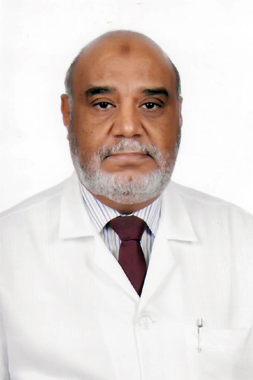 صلاح الدين حامد حسن